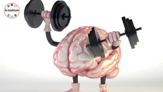Learning a New Language: It's Officially Keep Fit for the Brain
